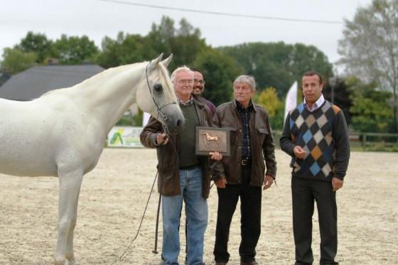 JK Omar Belgium 2013 WAHO Trophy Winner