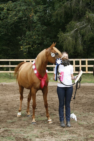 Aaliyah with Handler Doris Tedre and Aaliyah winning the senior mare class