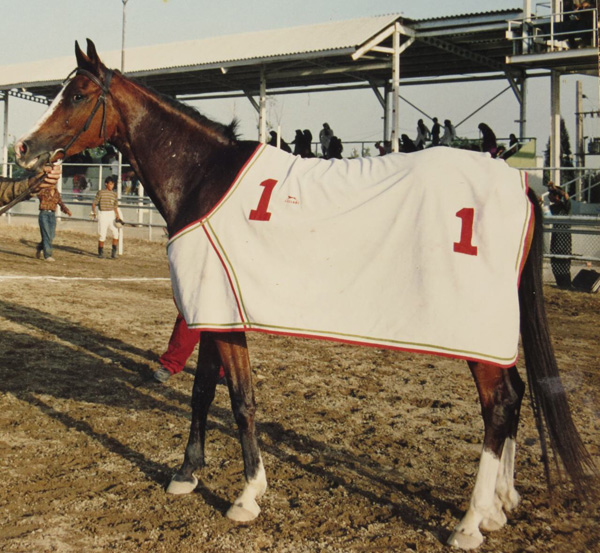 Mahrokh in her younger days at the racetrack