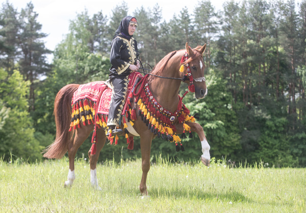 Olga Sivec with her stallion, Startas