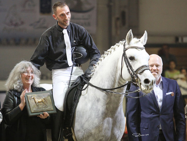 EXQUISITE'S FANTASY - WAHO Trophy Winner 2015 for Austria